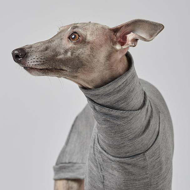 Sighthound Garments by COAT