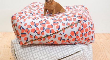 Urbanest Pet Beds from LoveThyBeast