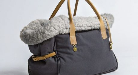 Dog Carrier and Travel Beds from Cloud7