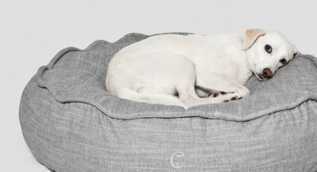 Cloud7 Macaron Dog Bed