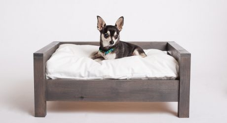 Elevated Dog Beds by Cozy Cama