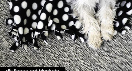 Dog-I-Y: Easy DIY Fleece Pet Blankets
