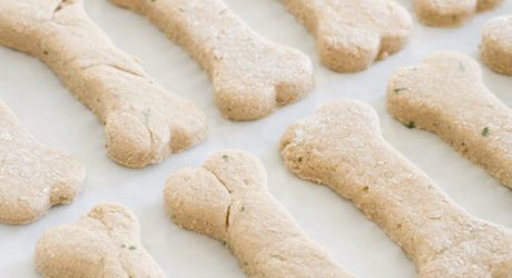 DOG-I-Y: Easy Two-Ingredient Homemade Dog Treats