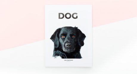 DOG Magazine Issue One
