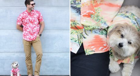 Matching Hawaiian Print Shirts for Dogs + Humans