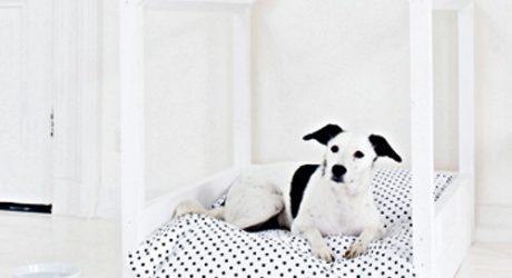 DOG-I-Y: A Modern Indoor Dog House