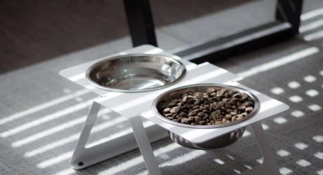 New Modern Dog Feeders from Drip Module