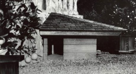 Frank Lloyd Wright's Dog House