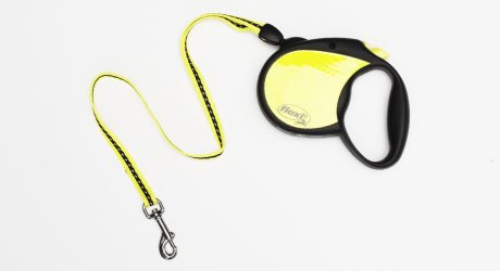 Flexi Neon Retractable Dog Leash