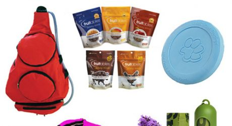 Giveaway: Summer Adventure Essentials from Fun Time Dog Shop