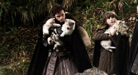 Bark Out Loud: Modern Day 'Game of Thrones' Dire Wolves