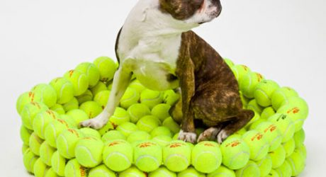 HEX Tennis Dog Bed by Hugh Hayden