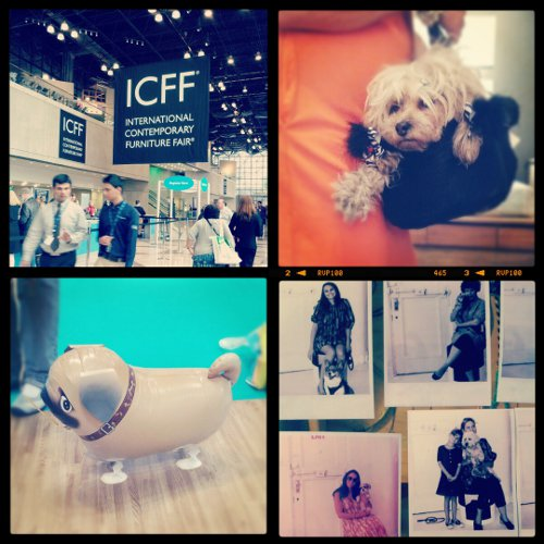 The Dogs of ICFF