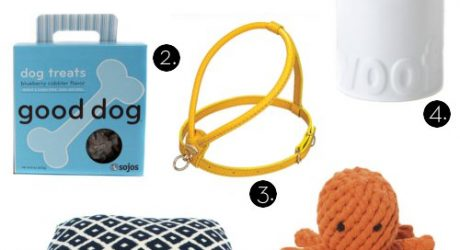 Designer Dog Products from Inubar