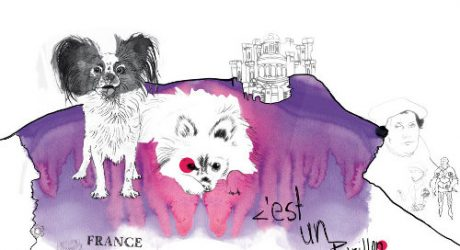 Dog Illustrations by Jana Bonsignore