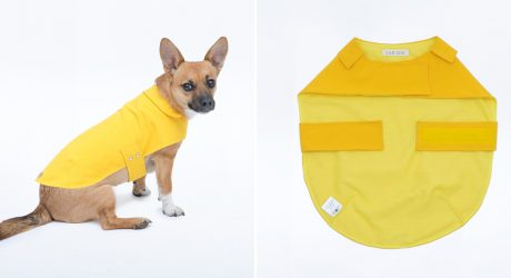 Stylish Dog Raincoats and Tanks from Jolie Dog