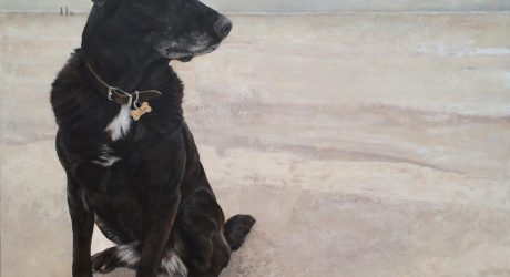 Custom Pet Paintings by Julie Glick