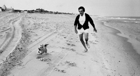 Photographs of Famous Writers and Their Dogs