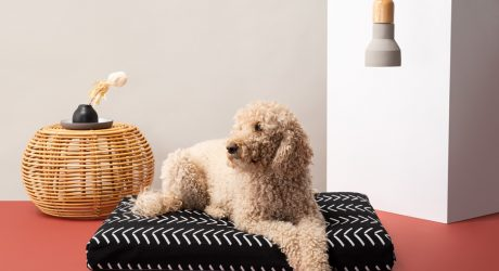 Boho Dog Bed Collection from LayLo Pets