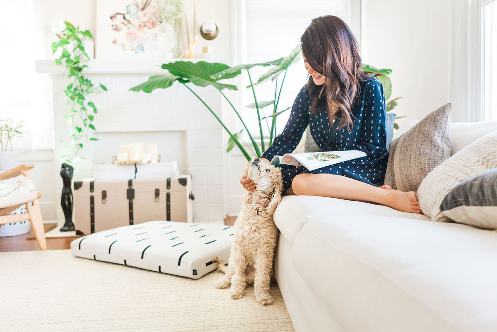 Spotted: Laylo Pets Home Tour with Monica Wang