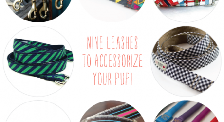 9 Modern Leashes to Accessorize Your Pup in Style