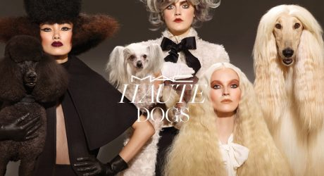 Haute Dogs Collection from M.A.C. Cosmetics