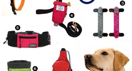 It's Spring: Get Up and Get Out with Fun Time Dog Shop