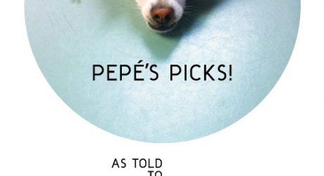 Pepé's Picks: 5 Items Every Dog Will Love