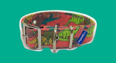 Harnesses, Leashes, and Collars from Pepito & Co.