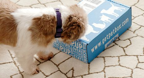 Monthly Pet Subscription Box from PetBox