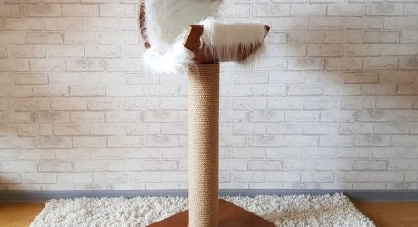 Modern Cat Furniture and Feeders From Real Tree Cat Store