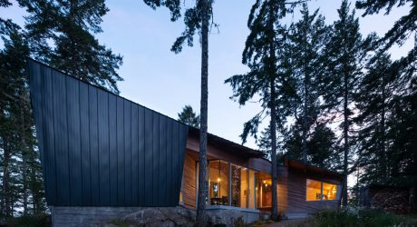 The Geometric Sooke 01 House Is Designed for a Woman and Her Dog