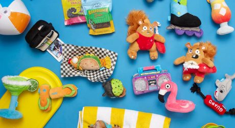 Spring Bark Dog Toys from BarkShop and Target