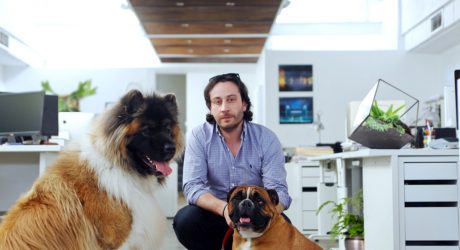 PetTech: Discussing Technology in the Pet Industry with Christopher Forcucci of Squeaker