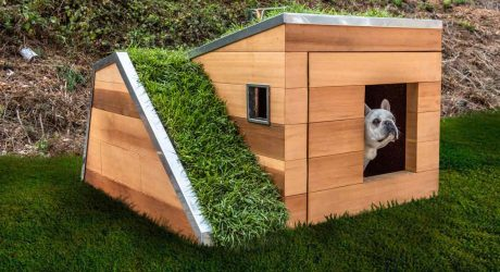 Doggy Dreamhouse Design by Studio Schicketanz