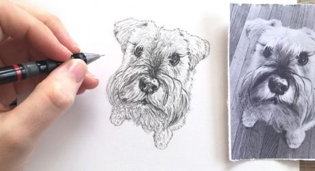 Hand Drawn Pet Portraits by Susanne Kasielke