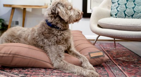 Handmade Luxury Dog Beds from The Houndry