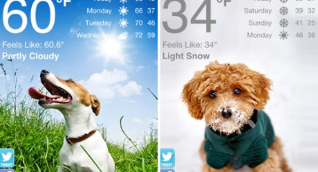 Weather Puppy: Free iPhone Weather App