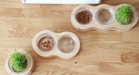Modern Dog Feeders from Wood Original Store