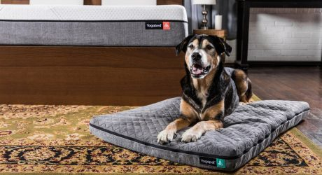 Yogapet Dog Mattress