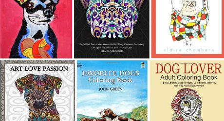 12 Awesome Adult Coloring Books for Dog Lovers