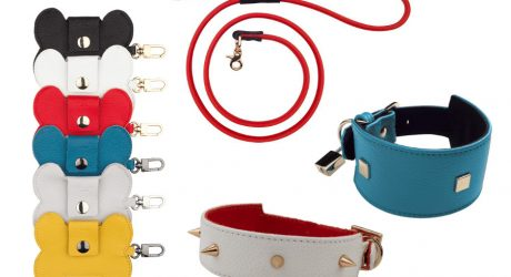 Luxury Dog Collars and Accessories from Annalisa Unleashed