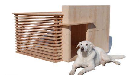Architectura Modern Dog House