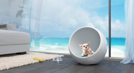 Aridus Den: A Climate-Controlled Pet House