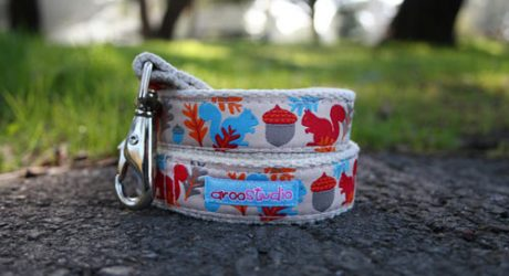 Squirrel Hemp Collar and Leash