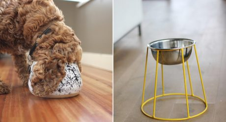 Elevated Dog Feeders and Long-Ear Bowls from Benji + Moon