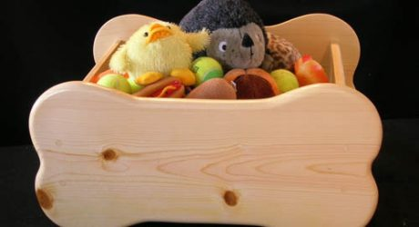 Bone-Shaped Pet Toy Box by Woodin' You