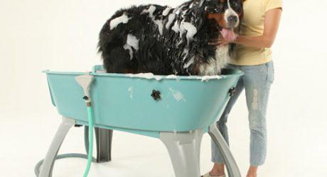 Booster Bath