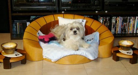 Contemporary Dog Furniture from Cedel Pets & Style