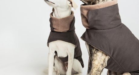 Brooklyn Waxed Cotton Dog Coat from Cloud7
